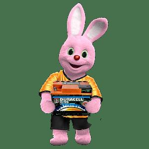 Bunny battery2